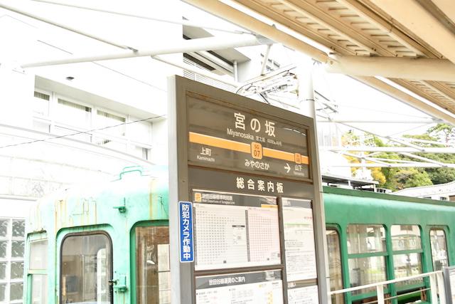 DSC_4454.JPG